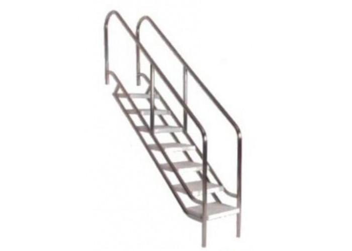 Pool entrance ladder for disabled